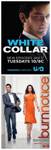 White Collar vs Burn Notice Poll - vote for your fandoms
